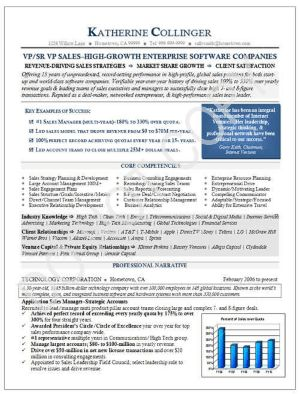 Executive Resume Sample: VP Sales - Technology Executive Resume Sample Page 1
