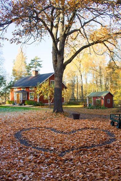 Höst i trädgården. Foto: Erika Åberg