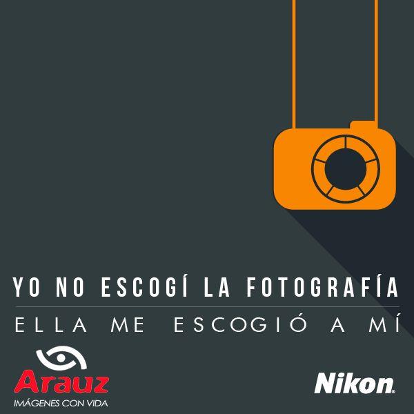 El que busca encuentra #ArauzDigital #nikon #nikonphotography