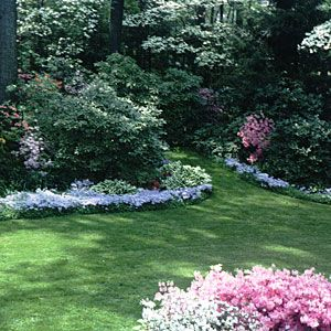 Landscaping Design In Raleigh Nc