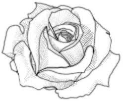 simple rose outline tattoo - Google Search