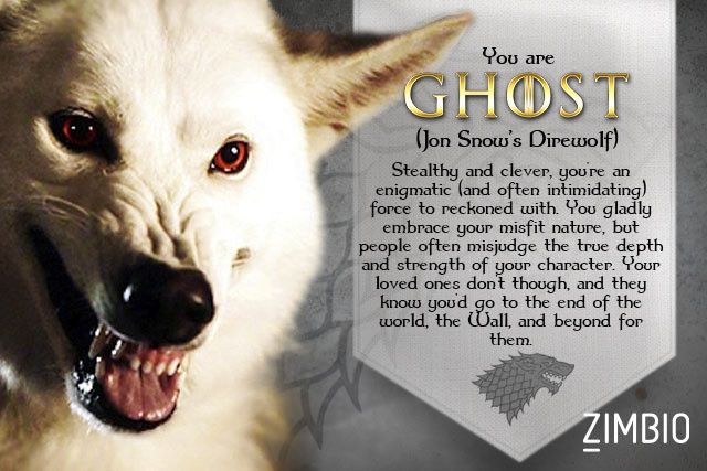 I took Zimbio's 'Game of Thrones' direwolf quiz and I'm Ghost! Who are you?