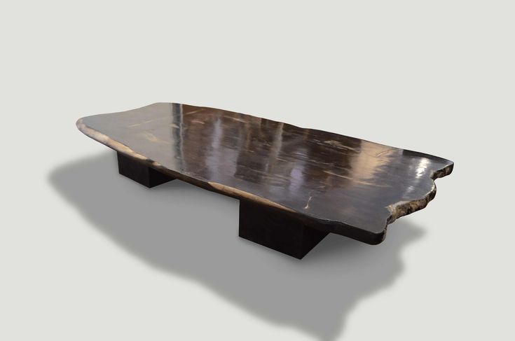 Super Smooth Petrified Wood Coffee Table Or Dining Table Coffee Table Petrified Wood