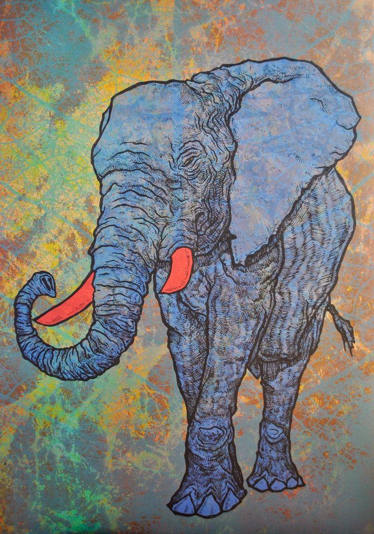 Jonasz Koperkiewicz: Elephant