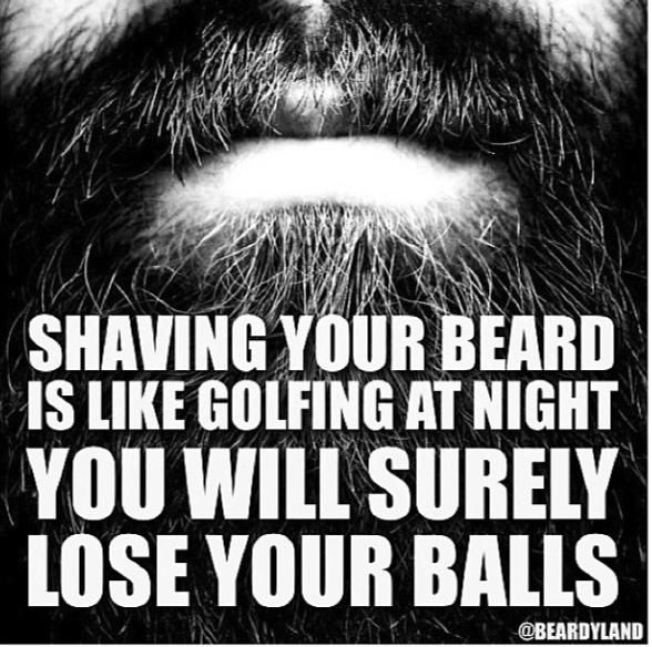 duck dynasty......I'm pretty sure this is how my husband feels about his beard!