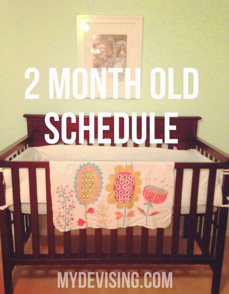 My Devising: 2 month old schedule