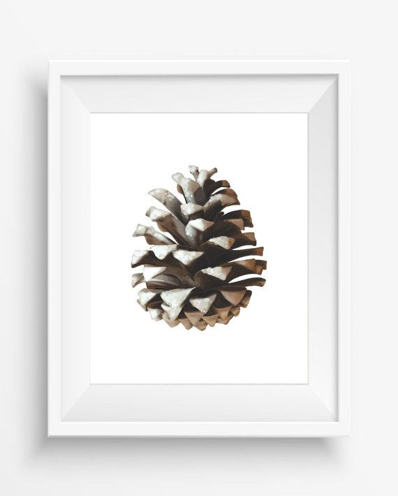 Pine Cone Art Prints , Pinecones Wall Art , Pine Cone Prints ,Modern Art,Nature…