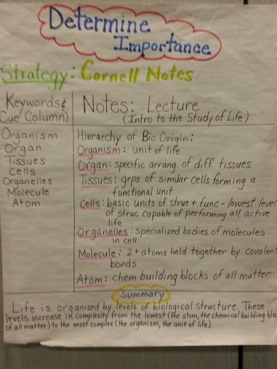 114 best Notetaking\/Cornell Notes images on Pinterest School - sample cornell note