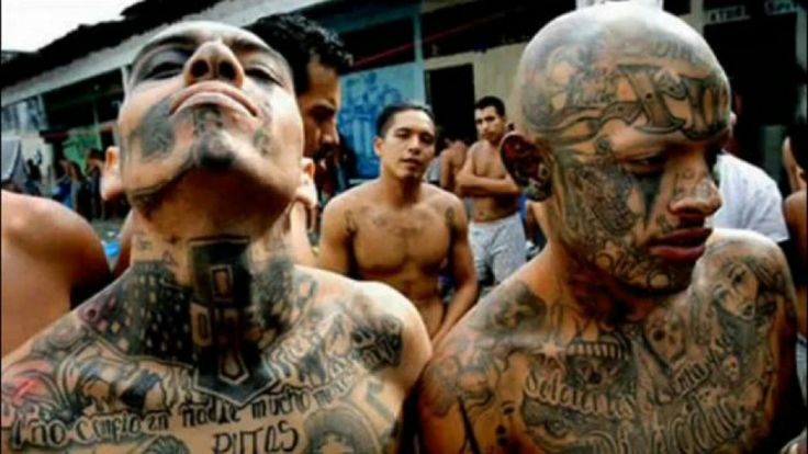Tatto. Dementes