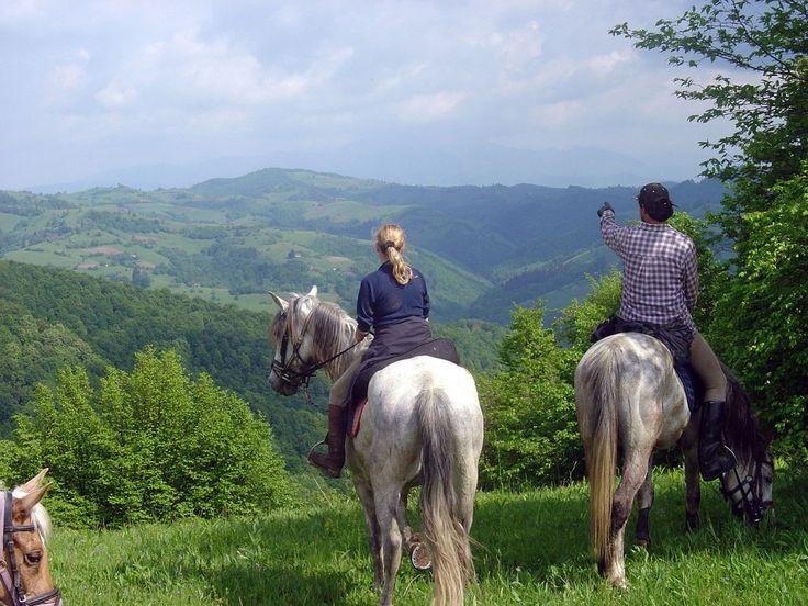 horse riding Transylvania in honeymoon