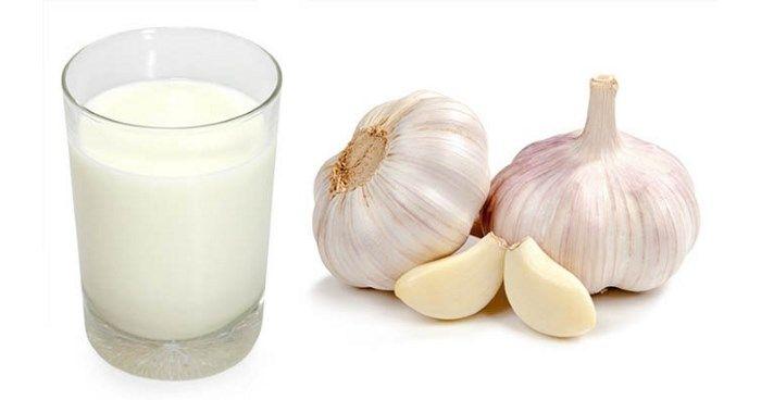 A fokhagymás tej elkészítése és jótékony hatásai | Kuffer