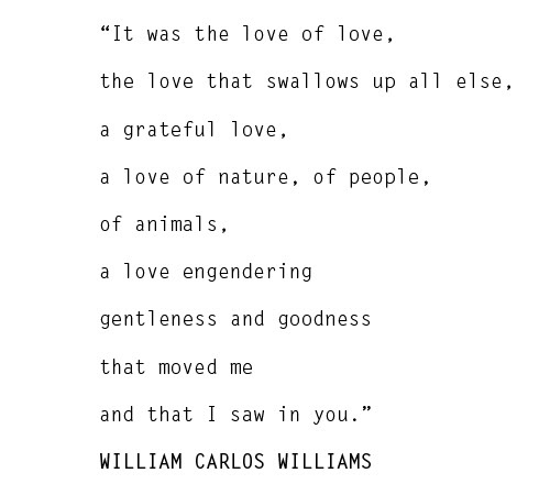 William carlos williams writing style