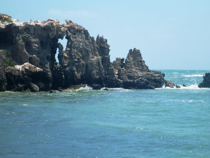 Penguin island in WA