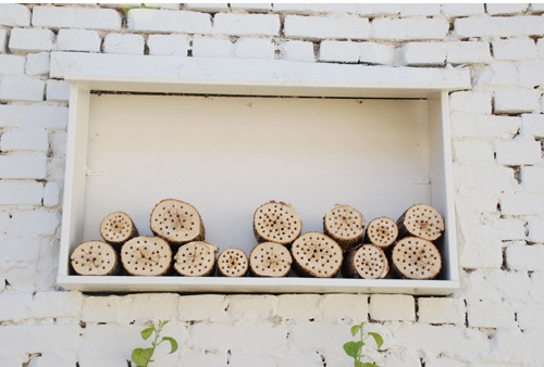 Interesting bee hive ideas for very busy bees.
