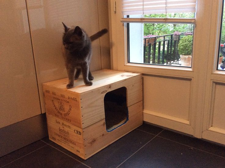 une liti re mill sim e pour un chat de grand cru diy cats only pinterest diy and crafts. Black Bedroom Furniture Sets. Home Design Ideas