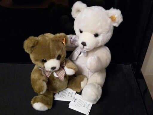 The sweetest Teddy ever