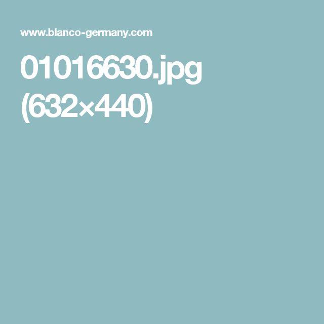 01016630.jpg (632×440)