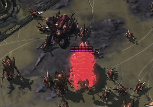 Infestors in campaign/co-op look quite fabulous as of patch 3.8 #games #Starcraft #Starcraft2 #SC2 #gamingnews #blizzard