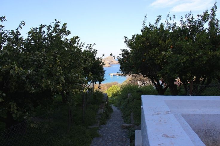 The path down from the Main Square leading towards my land