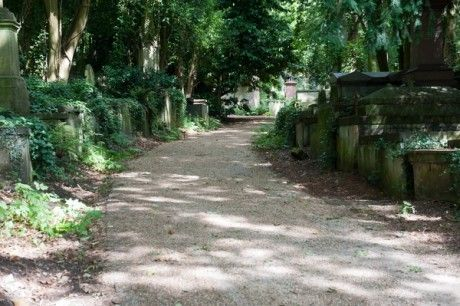 A peaceful country lane? No, it's Highgate cemetery! A meandering path, West Cemetery.  © Hugh Thompson