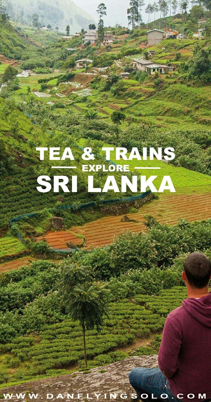 #SriLanka 's #HillCountry and #tea with breathtaking #photography Daniel James
