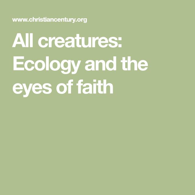 All creatures: Ecology and the eyes of faith
