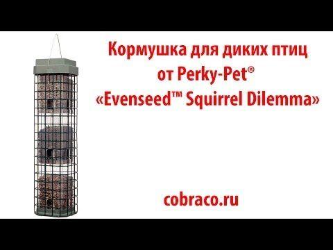Кормушка для птиц от Perky Pet® Evenseed™ Squirrel Dilemma прекрасно защищает птичий корм от нашествий белок. Большой резервуар позволяет вместить в кормушку до 1,8 кг семян. Причем конструкция позволяет насыпать корм 3 видов одновременно.