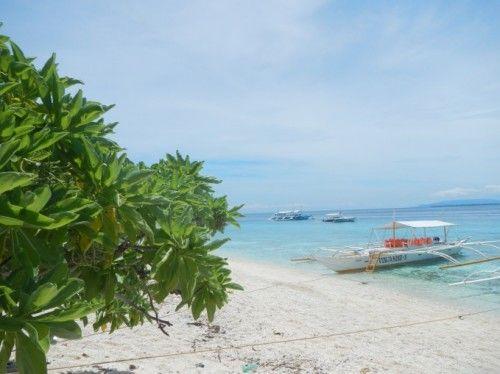 Spiaggia di Bohol nelle Filippine. Vedi tutto su http://www.happydir.com/1138-filippine-dugong-squali-balena-tartarughe/