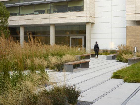 Smith Cardiovascular Research Building   University of California San Francisco   Andrea Cochran Landscape Architecture