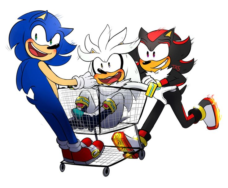 52 best Sonic images on Pinterest | Hedgehogs, Sonic boom ...