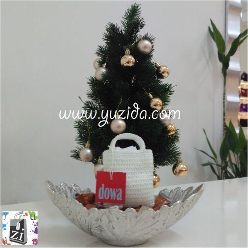 Dowa Snow Coin | Yuzida