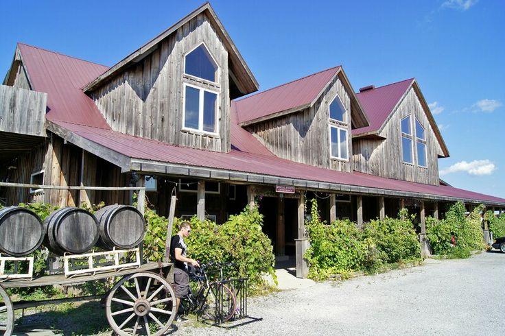 Caroline Cellars.  My favorite winery in NOTL.
