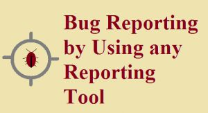 <b>Bug Reporting by using any Reporting tool</b>