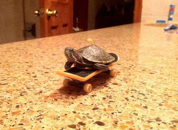 """""""I'm YOUNG! And I'm FREEEEEE"""" 