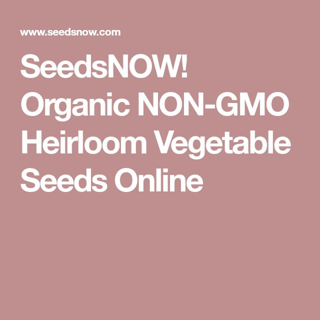SeedsNOW! Organic NON-GMO Heirloom Vegetable Seeds Online