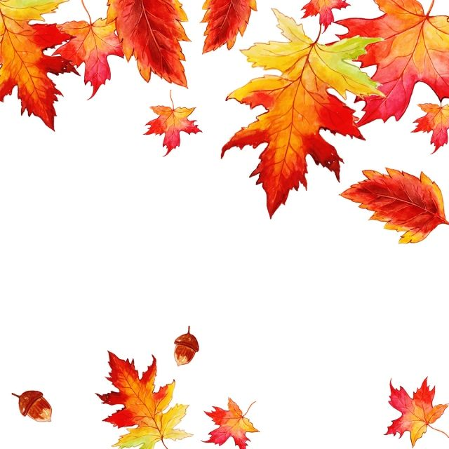 Beautiful Watercolor Autumn Leaves Background Maple Leaf Clipart Maple Leaf Orange Png And Vector With Transparent Background For Free Download Watercolor Autumn Leaves Autumn Leaves Wallpaper Autumn Leaves Background