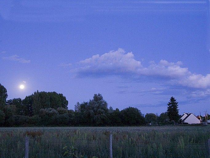 Par temps clair, les froides nuits d'avril peuvent faire des dégats aux jardin - F. Marre - Rustica
