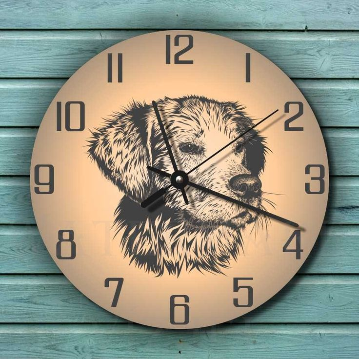 Kutyás falióra. Retriever grafikás falióra csendes óraszerkezettel. Dog wall clock with silent clockwork.