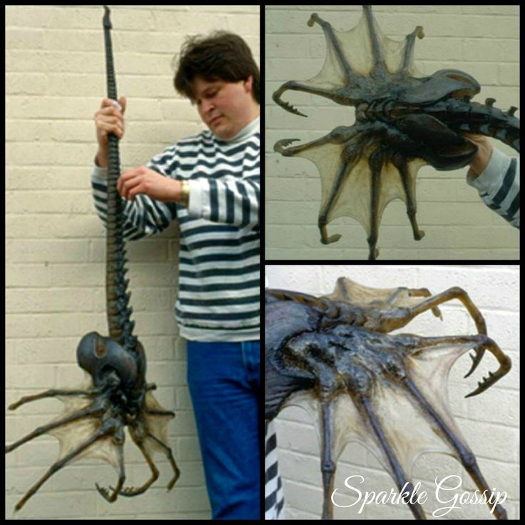 Yeah this giant sea spider- Ew
