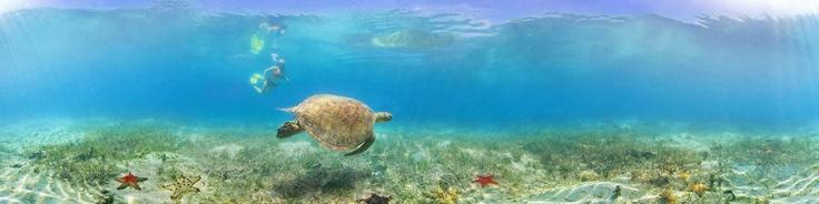 Water Sports Noumea New Caledonia