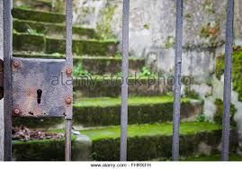 Image result for rusty farm moss