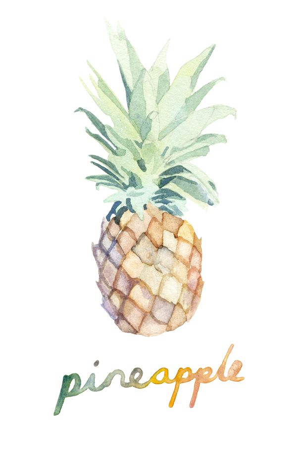 Illustration | Watercolor Pineapple by Marcel George