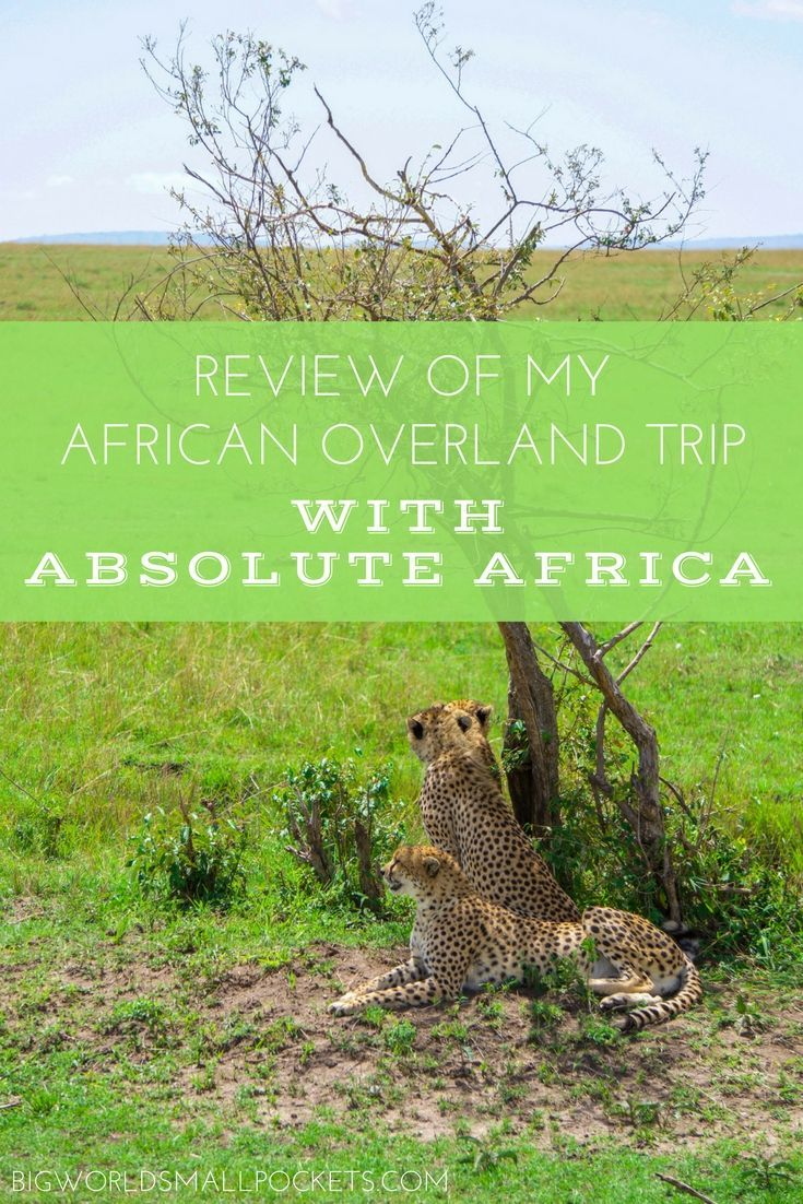 Absolute Africa Review | Travel Africa | Africa travel, Morocco