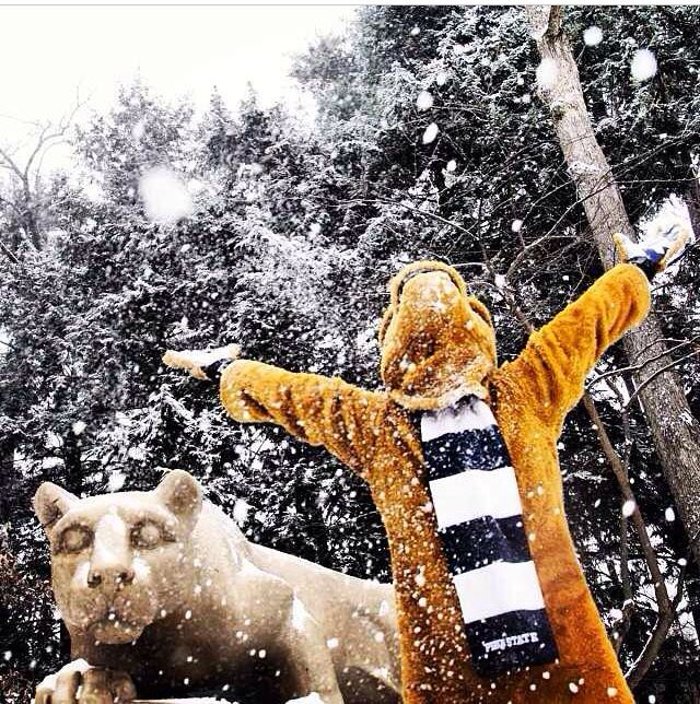 A snowy day with the Lion!