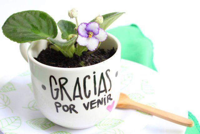Un regalo original que a todos les gustará. Regala una planta o un cactus a tus invitados como recuerdo de la Primera Comunión