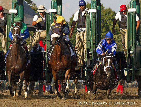 Best Horse Racing Images On   Horse Racing Race