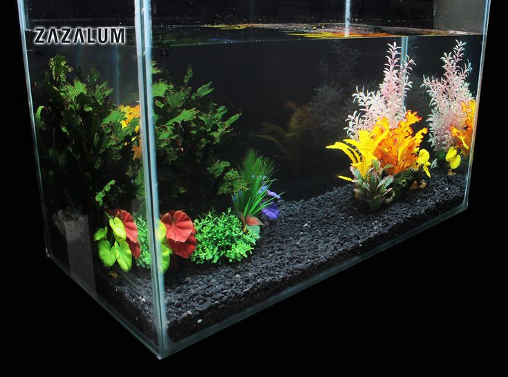 Get The Most Stunning Aquarium Artificial Plants From Here!
