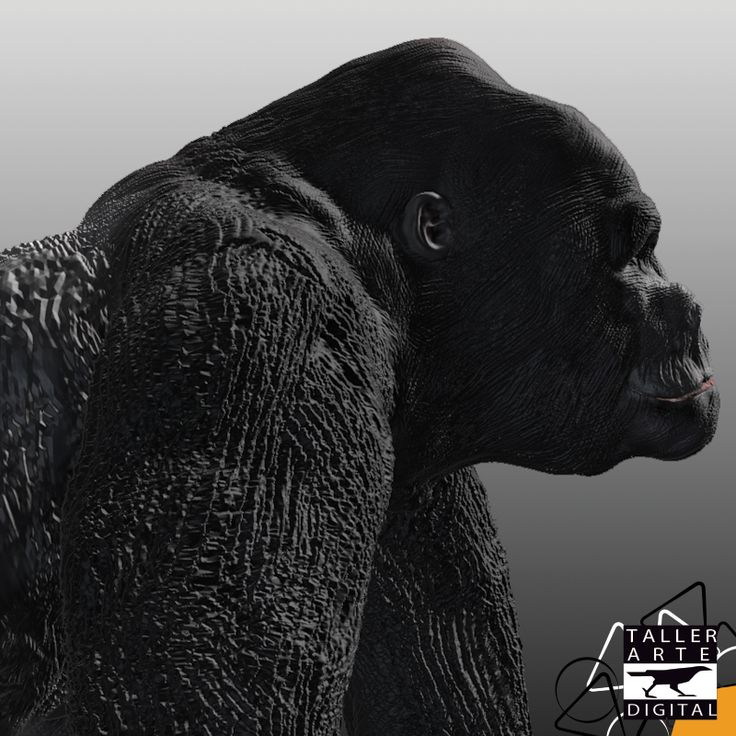 Juan Manuel Montoya. Egresado #Leitmotiv #Modelado3D #Animation