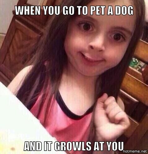 When you go to pet a dog and it growls at you.