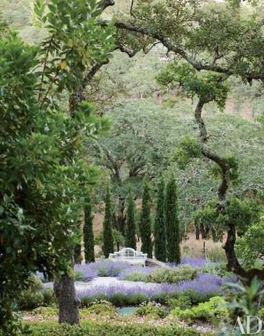 The gardens of a Northern California home are the work of Stephen Suzman of SCDA | archdigest.com